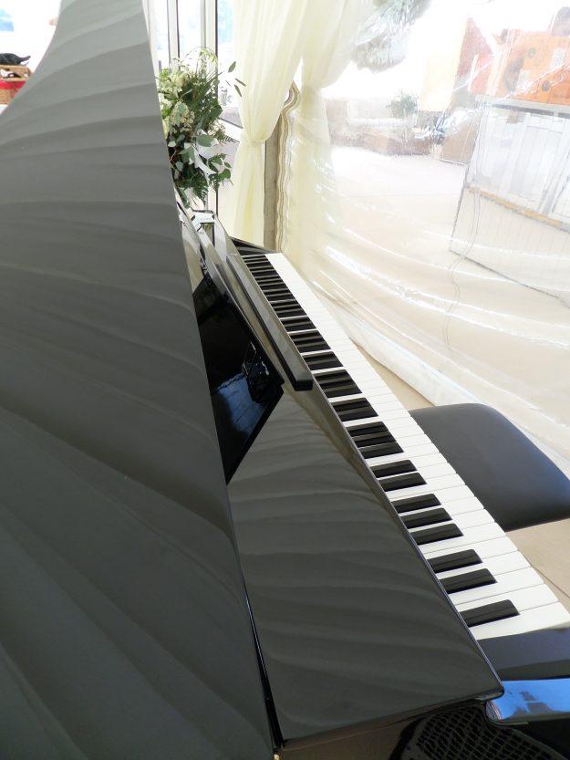 Grand Piano Shell - Jazz Pianist/Band Brighton