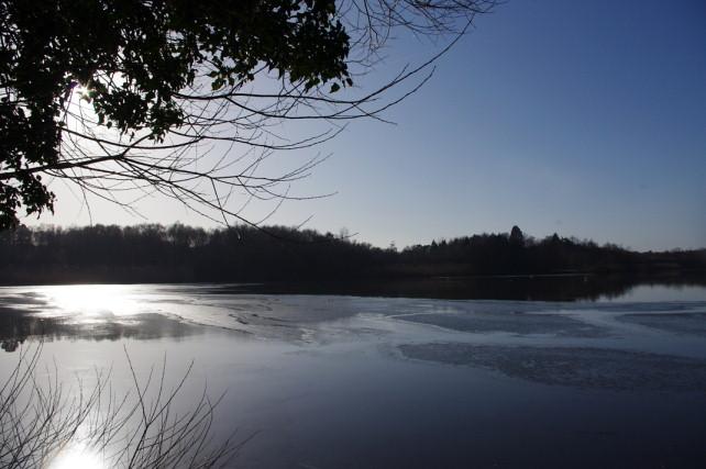 Hedgecourt Lake - Jazz Pianist Surrey